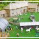 inilah beberapa contoh usaha yang menguntungkan di desa yang pastinya menginspirasi